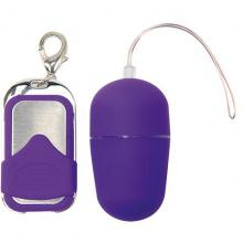Виброяйцо с пультом ДУ «Vibrating Egg Pleasure Shiver Medium Purple», Toyz4lovers T4L-801006